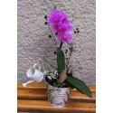 Orquídea en metal vintage