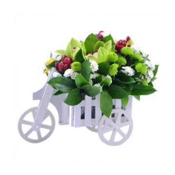 Triciclo vintage conflores
